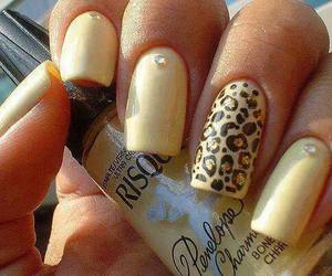 cool, leopard, and nails image