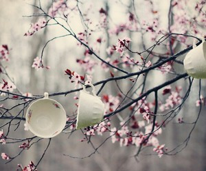 flowers, cup, and tree image