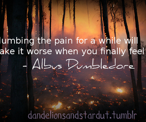 albus dumbledore, NUMB, and harry potter quotes image