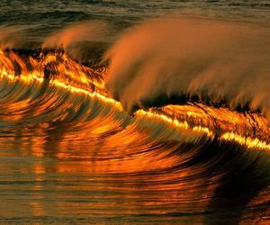 wave and golden wave image