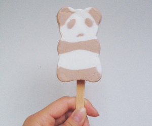 food, ice cream, and panda image