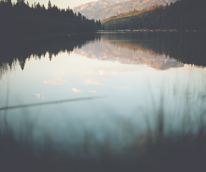 lake, nature, and landscape image