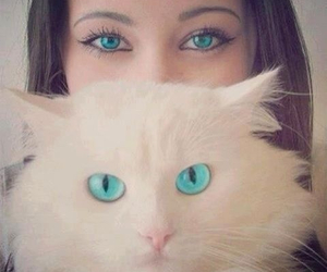 blue eyes, girl, and pet image