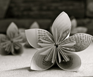 art, black and white, and flower image