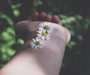 flowers, vintage, and tumblr image