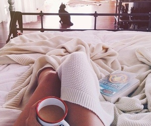 coffee, bed, and cat image