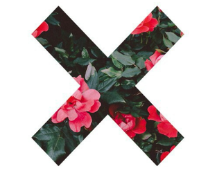 flowers, x, and indie image