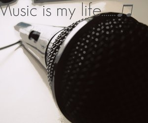 artistic, life, and music image