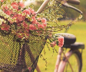 bicicleta, flores, and pink image