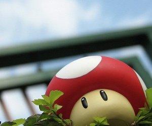game;fungi;mario;bros image