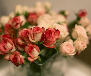 rose, flowers, and pretty image