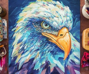 drawing, art, and aguila image