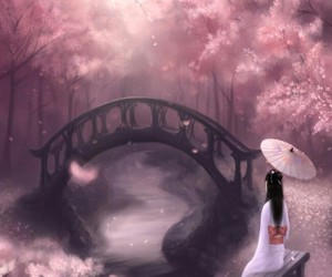 beautiful, cherryblossom, and japan image