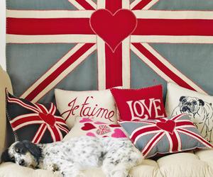 dog, england, and london image