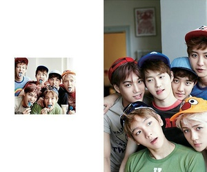 exo derps image