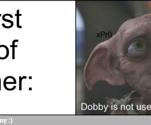 funny, harry potter, and dobby image