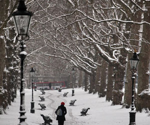 london, snow, and green park image