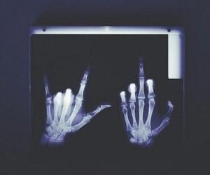 bones, grunge, and skulls image