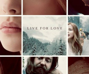 if i stay, book, and chloe grace moretz image