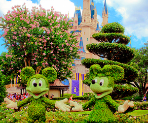 disney, garden, and luxurious image