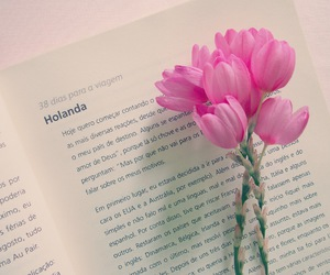 book, flowers, and history image