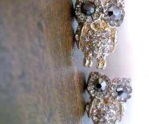 earrings, fashion, and owl image