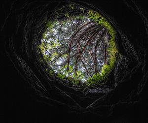 wonderland and hole image