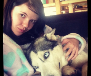 cuddle, husky, and snowy image