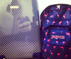 backpack, blue, and flamingo image
