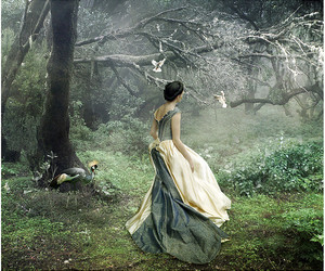 dress, forest, and bird image