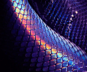 purple, snake, and aesthetic image