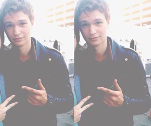 ansel and elgort image