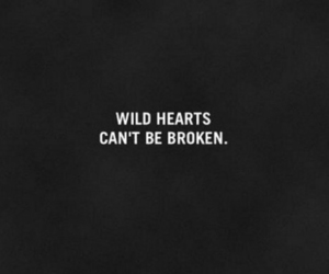 wild, quotes, and broken image