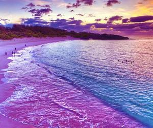 beach, sea, and purple image