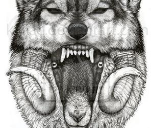 wolf, tattoo, and sheep image