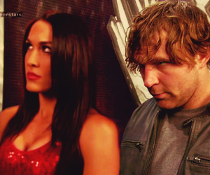 wwe, the shield, and brie bella image