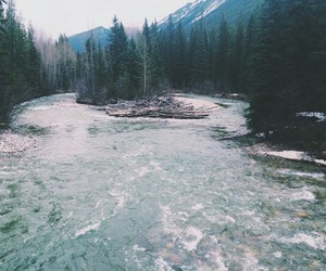 grunge, river, and nature image