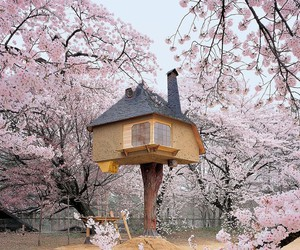 house, japan, and tree image
