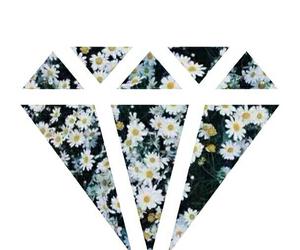 flowers, diamond, and overlay image