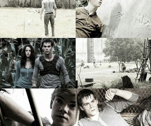 gally, thomas, and maze runner image
