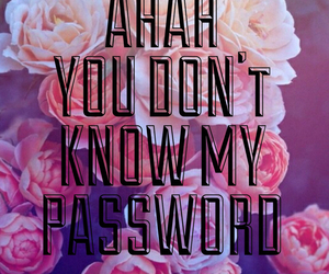 flowers, password, and background image