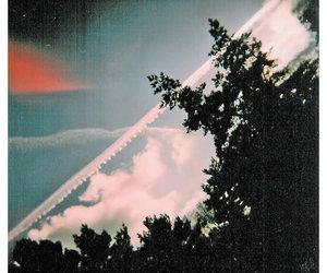 light leak, scenery, and trees image