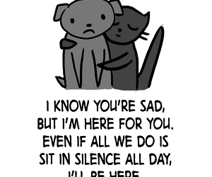 quote, love, and cat image