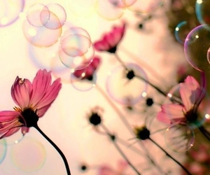 girly, pink, and bubbles image