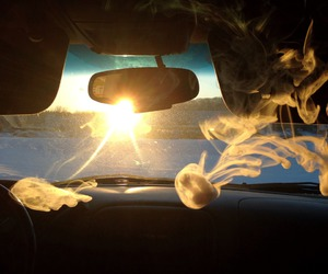 smoke, sun, and weed image