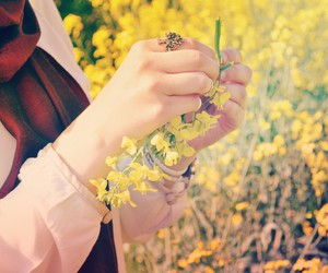 faith, flower, and hijab image