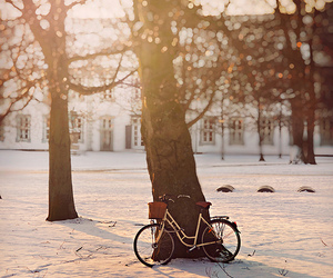 bike, snow, and photography image