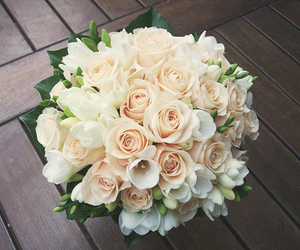 roses, white, and fuckyeahhprettythings image