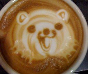 pedobear, coffee, and funny image