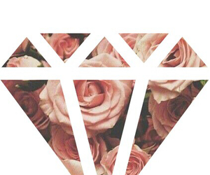 diamond, floral, and roses image